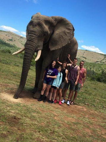 KORESH TAKES ON AFRICAN SAFARI
