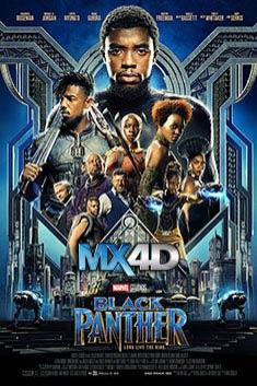 BLACK PANTHER PACKING THEATERS NATIONWIDE
