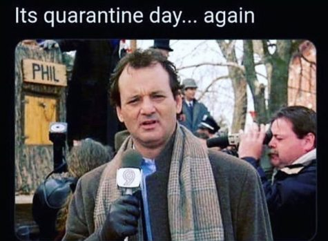 Bill Murray. Groundhog Day (1993)